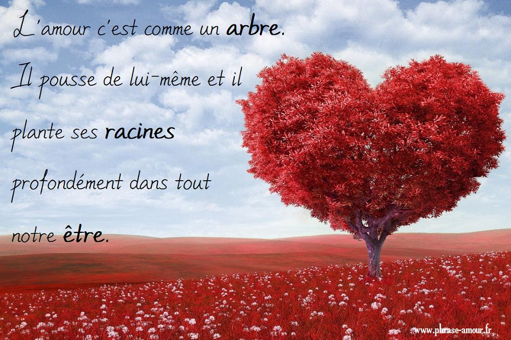 Photos Et Images Citation Et Phrases D Amour
